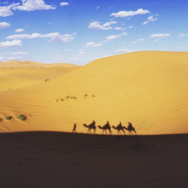 sombra de camellos en el desierto del Sahara de Marruecos con nuestro tour de 4 dias