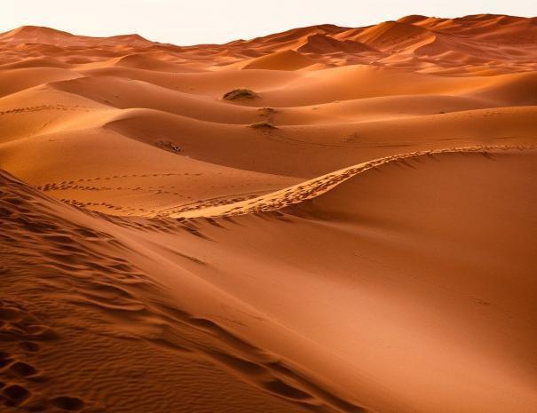 El sahara de Marruecos
