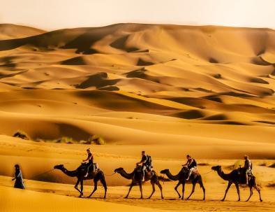 Merzouga camel rides