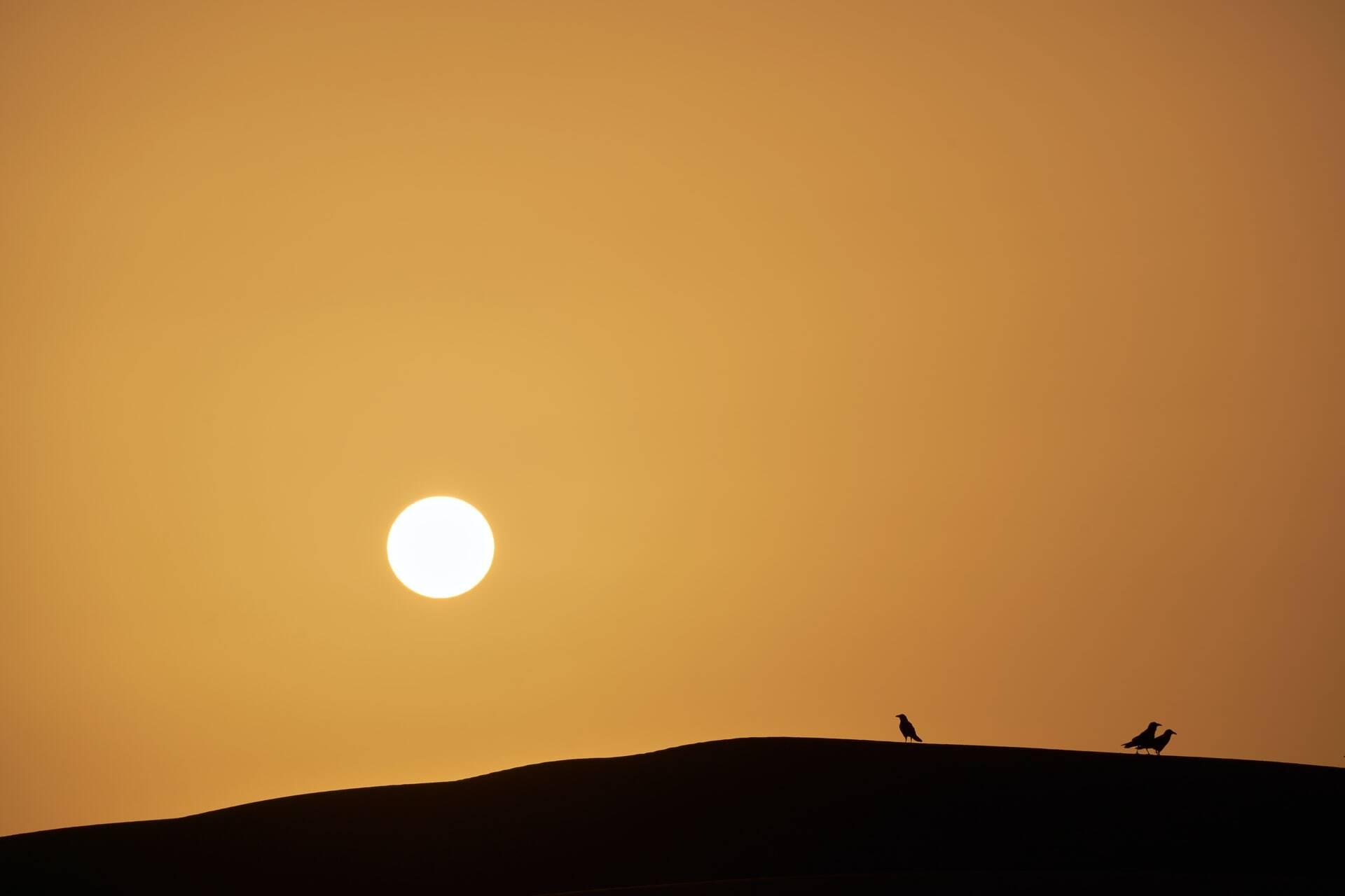 4 days tour from Marrakech to Fes via Merzouga desert