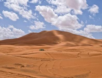 Marrakech to fes desert tour in 5 days